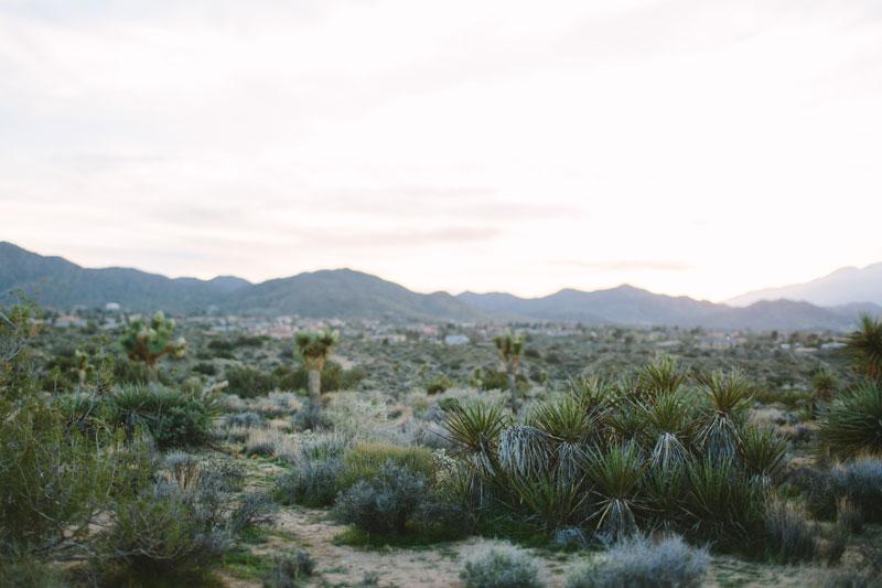 Kelso-Dunes-Yucca-Valley-Wedding-138