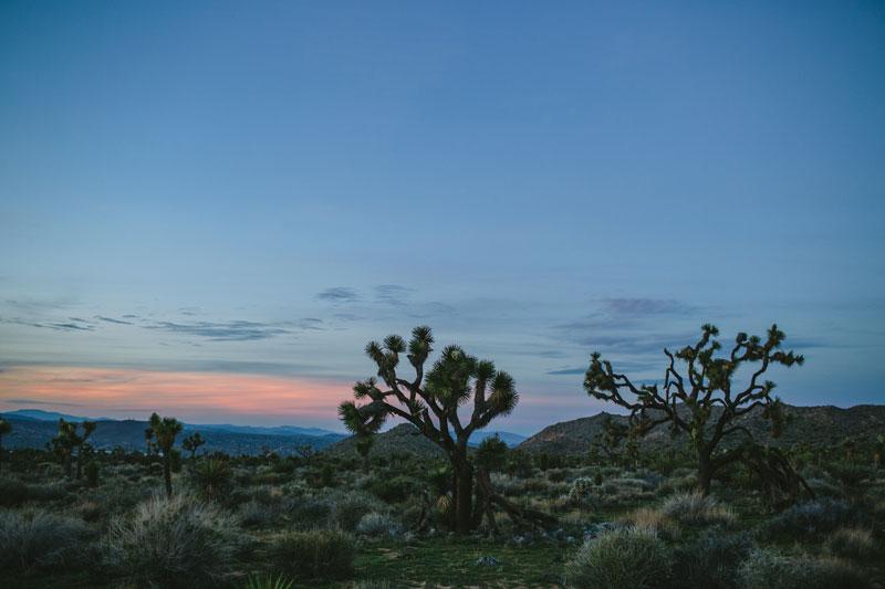 Kelso-Dunes-Yucca-Valley-Wedding-140
