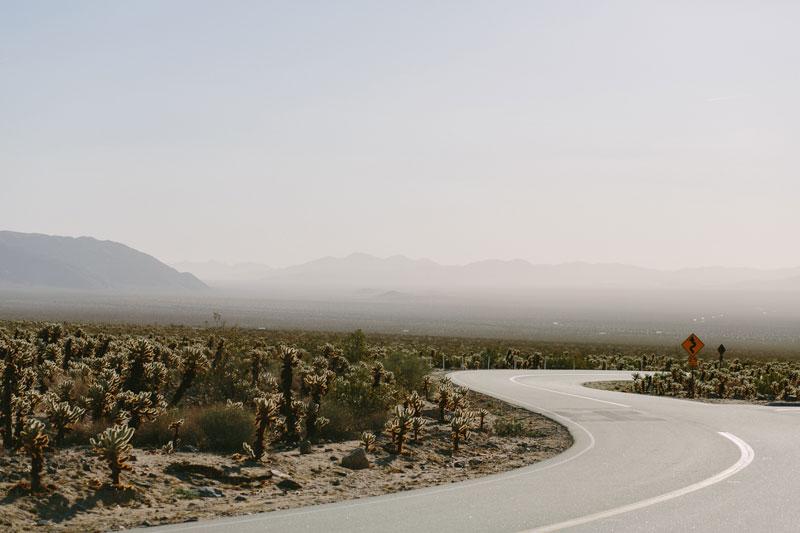 Kelso-Dunes-Yucca-Valley-Wedding-46