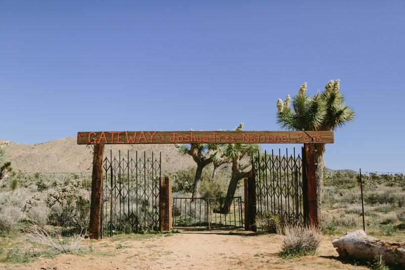 Kelso-Dunes-Yucca-Valley-Wedding-51