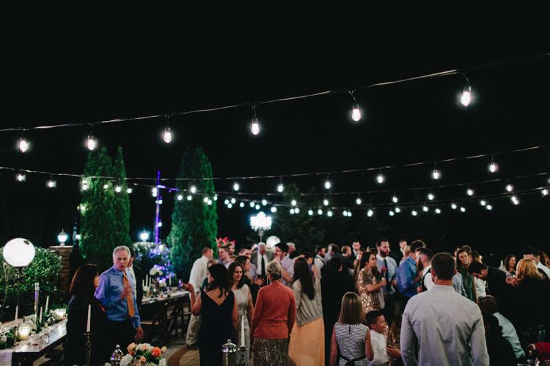 Aska-Farms-Blue-Ridge-Wedding-Michelle-Scott-Photography-176