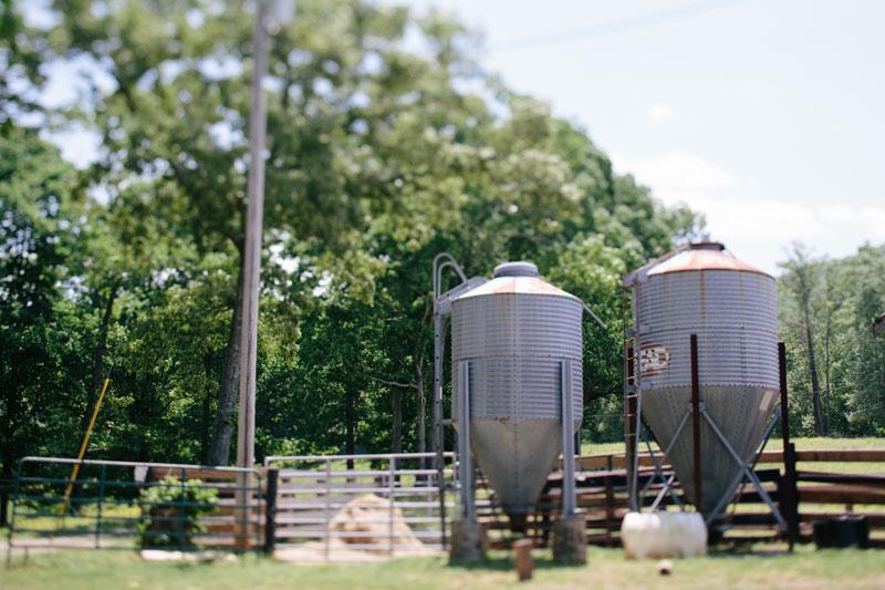 Aska-Farms-Blue-Ridge-Wedding-Michelle-Scott-Photography-8